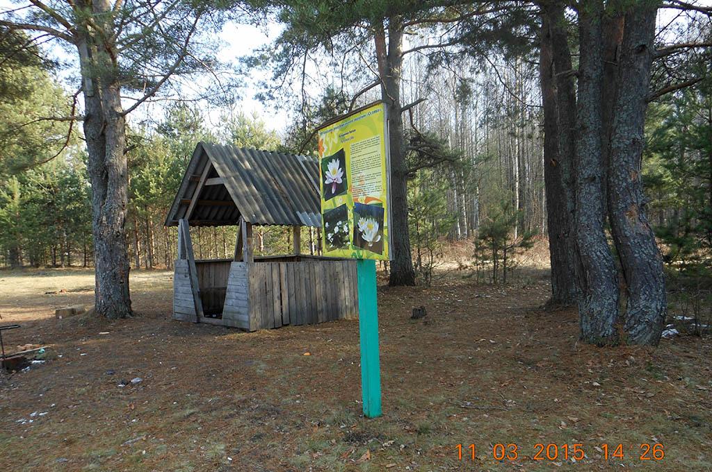 Домик охотника и рыболова - hunter's and fisherman's house